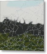 Spiderweb Metal Print
