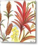 Spiky Florida Flowers Metal Print