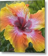 Spin The Bottle Hibiscus Metal Print