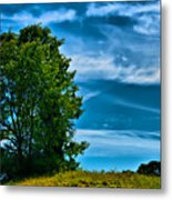 Sping Landscape In Nh 3 Metal Print