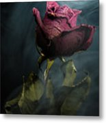 Spirit Of A Dying Rose Metal Print