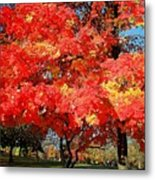 Spirit Of Fall Metal Print