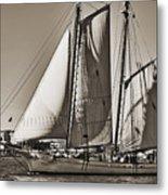 Spirit Of South Carolina Schooner Sailboat Sepia Toned Metal Print by Dustin K Ryan