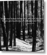 Spiritual Journey Metal Print