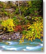 Splash Of Color Along The Creek Metal Print