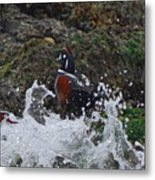 Splashed At Haystack Rock Metal Print