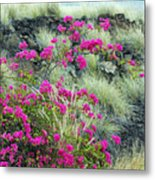 Splashes Of Pink Metal Print
