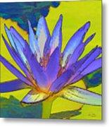 Splendid Water Lily Metal Print