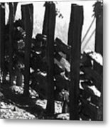 Split Rail Fence Metal Print
