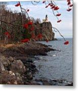 Split Rock Berries Metal Print