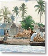 Sponge Fisherman In The Bahama Metal Print by Winslow Homer