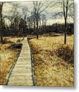 Spooky Hike On The Appalachian Trail Metal Print