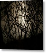 Spooky Sumac Metal Print