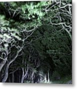 Spooky Trees Metal Print