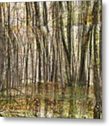 Spooky Woods Metal Print