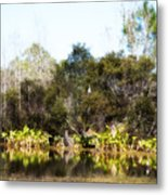 Spoon Bill Swamp Metal Print