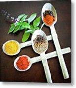 Spoons N Spices Metal Print