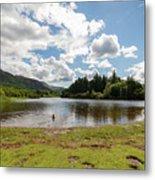 Spot The Swimming Dog In Derwnt Water Lake Metal Print