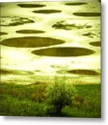 Spotted Lake Metal Print
