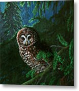 Spotted Owl In Ancient Forest Metal Print