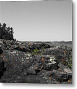 Spotted Rocks Metal Print