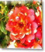 Spread Petals Of A Red Rose Metal Print