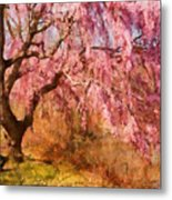 Spring - Sakura - A Beautiful Spring Day  Metal Print by Mike Savad