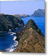 Spring At Anacapa Island, Channel Metal Print
