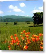 Spring At Gainey Ranch Metal Print