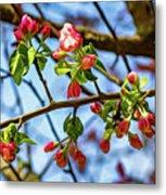 Spring Awakening 3 - Paint Metal Print