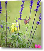 Spring Beauties In The Garden Metal Print