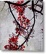 Spring Bloosom In Maldives. Flamboyant Tree II. Japanese Style Metal Print