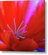 Spring Blossom 8 Metal Print
