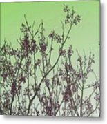 Spring Branches Mint Metal Print