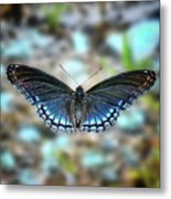 White Admiral Or Red-spotted Purple Metal Print