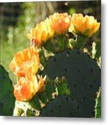 Spring Cactus 14 Metal Print
