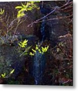 Spring Cascade Metal Print