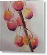 Spring Cherries Metal Print