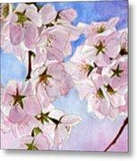 Spring- Cherry Blossom Metal Print