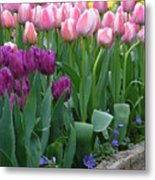 Spring Colors Metal Print