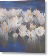 Spring Crocuses Metal Print
