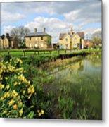 Spring Daffodils, Ramsey Village Pond, Cambridgeshire, England Metal Print