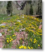 Spring Dandelion And Mountain Landscape Metal Print
