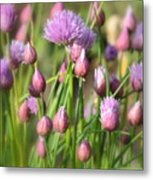 Spring Dreams Metal Print