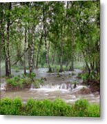 Spring Floodwaters. Altai Metal Print