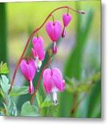 Spring Hearts - Flowers Metal Print