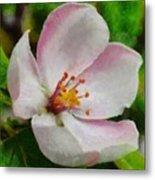 Spring - Id 16235-142747-0642 Metal Print