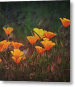 Spring In A Poppin' Metal Print