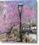 Spring In  Columbus Park 1 Metal Print