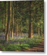 Spring In Haywood No 2 Metal Print